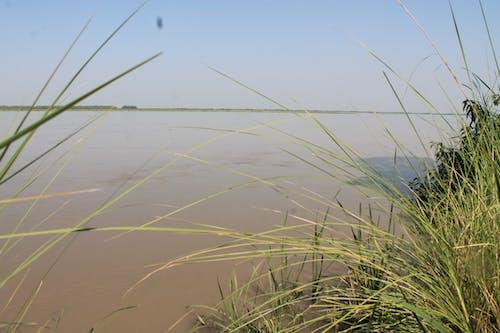 Free stock photo of pakistan, river indus