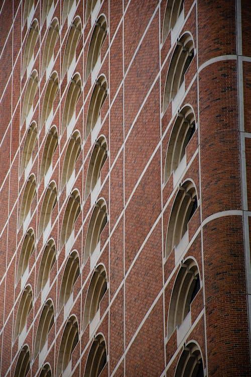 Foto profissional grátis de arquitetura, construção, estrutura, textura