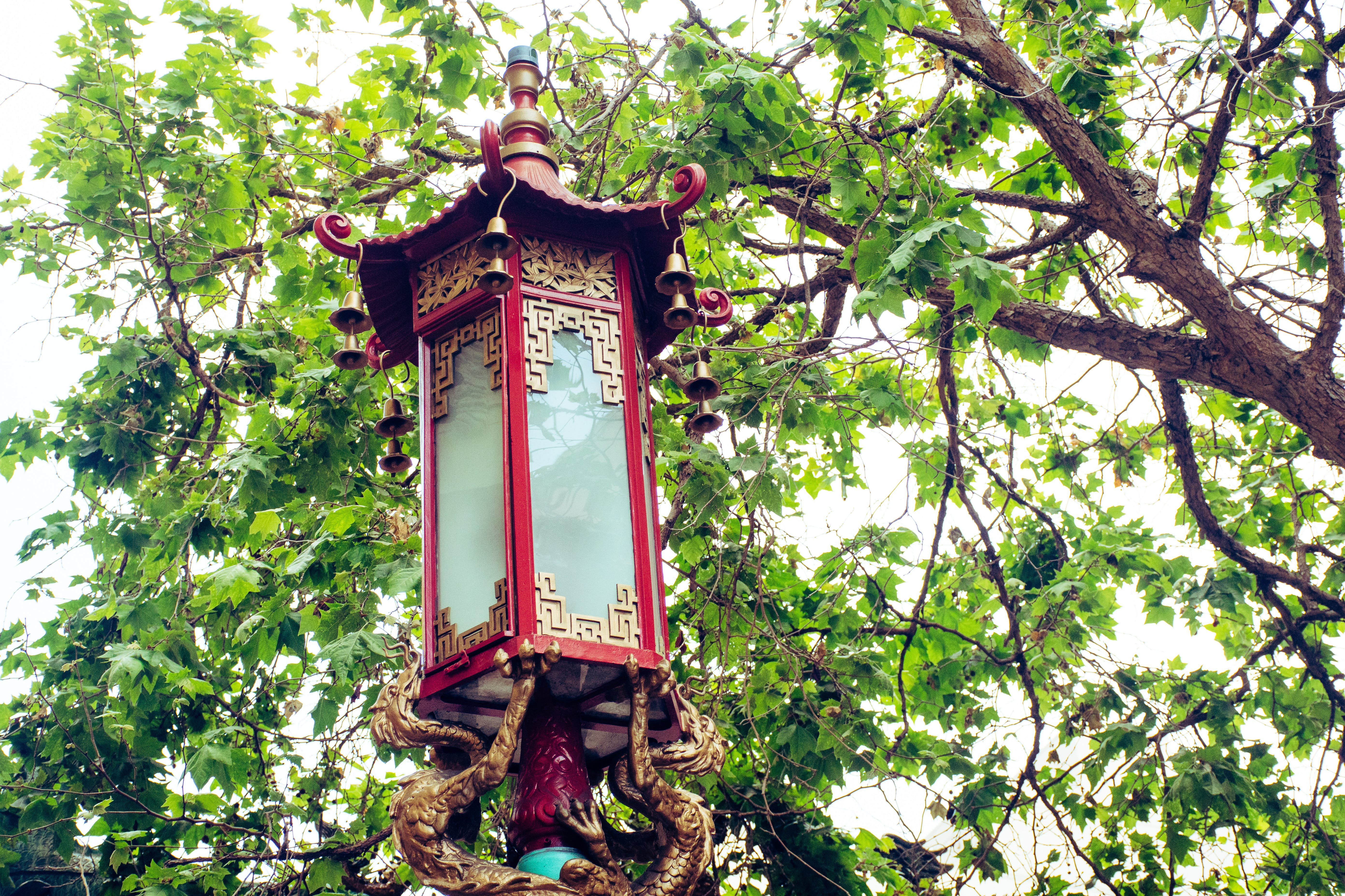 Red and Brown Light Post Under Green Leaf Tree