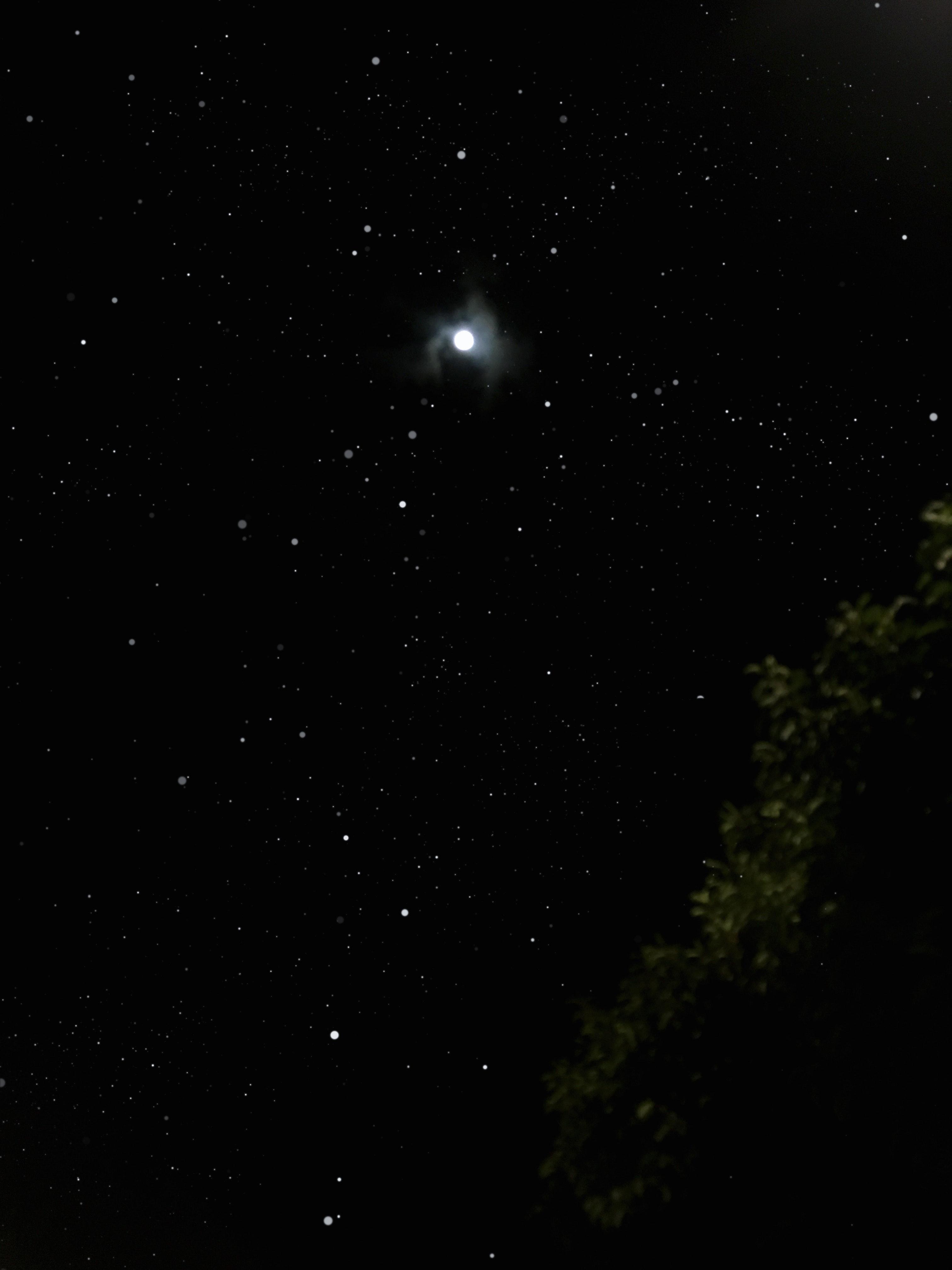 Foto Stok Gratis Tentang Bulan Purnama Langit Malam Malam Berbintang