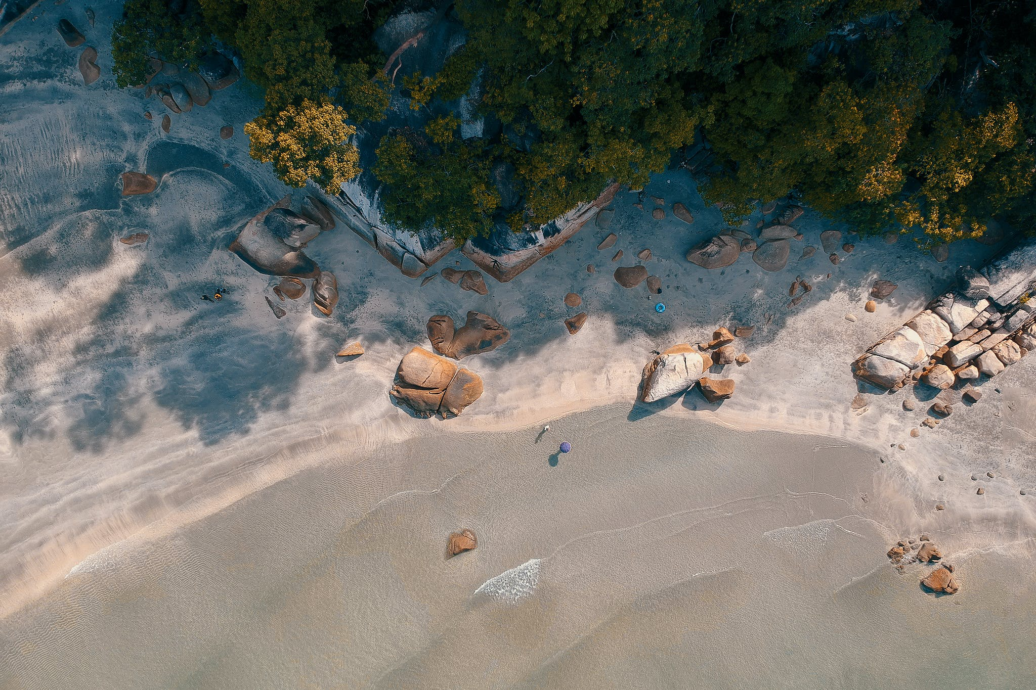 Aerial Photography of Beach Shore With Trees Nearby