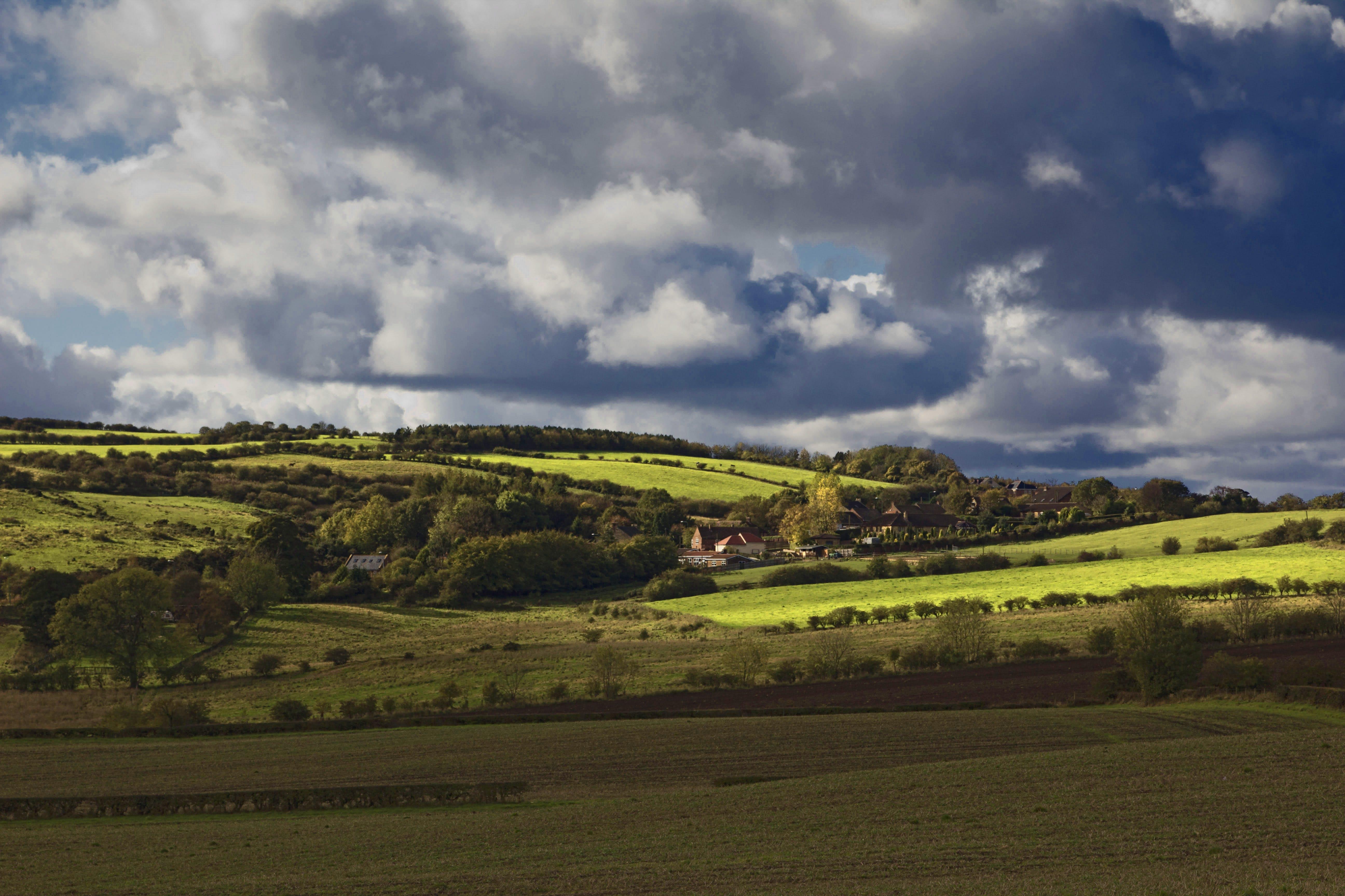 ağaçlar, alan, Çiftlik, çim içeren Ücretsiz stok fotoğraf