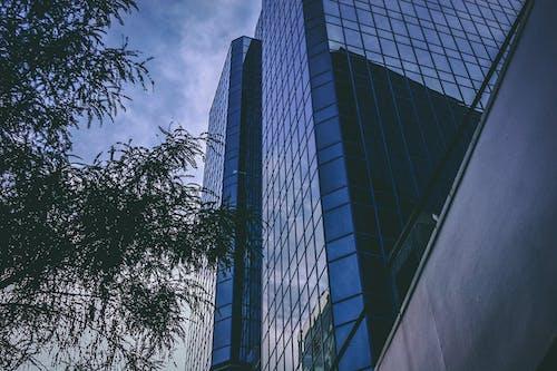 低角度拍攝, 多層建築, 建築, 建築設計 的 免費圖庫相片