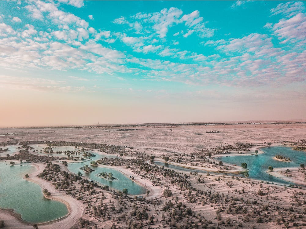 Oasis in desert area in cloudy weather