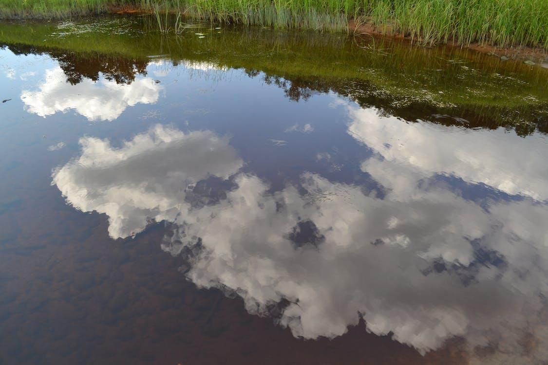 水, 雲 的 免費圖庫相片