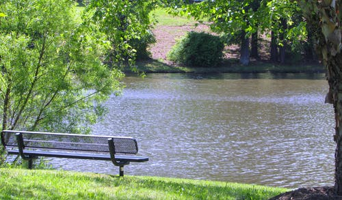 Free stock photo of bench, Bench By The Lake, landscape