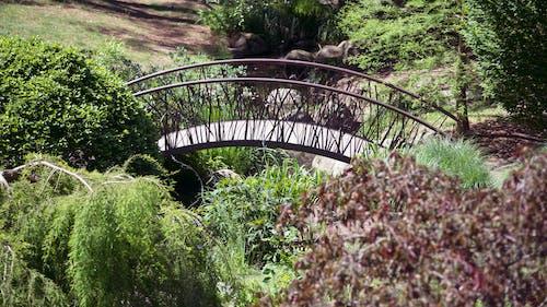 Free stock photo of bridge, garden, landscape, walking bridge