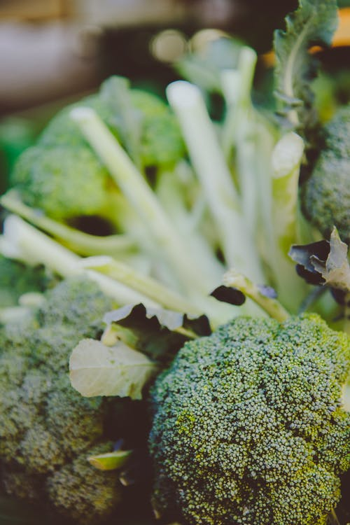 Selective Focus Photography of Broccoli