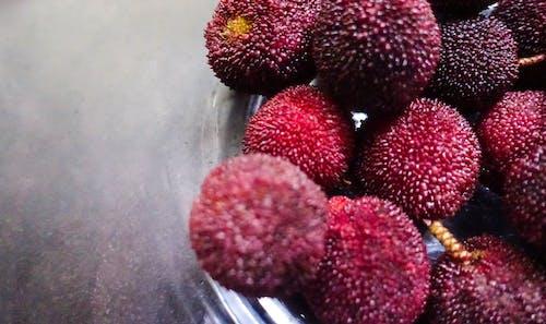 Foto stok gratis buah-buahan, merah, myrica rubra