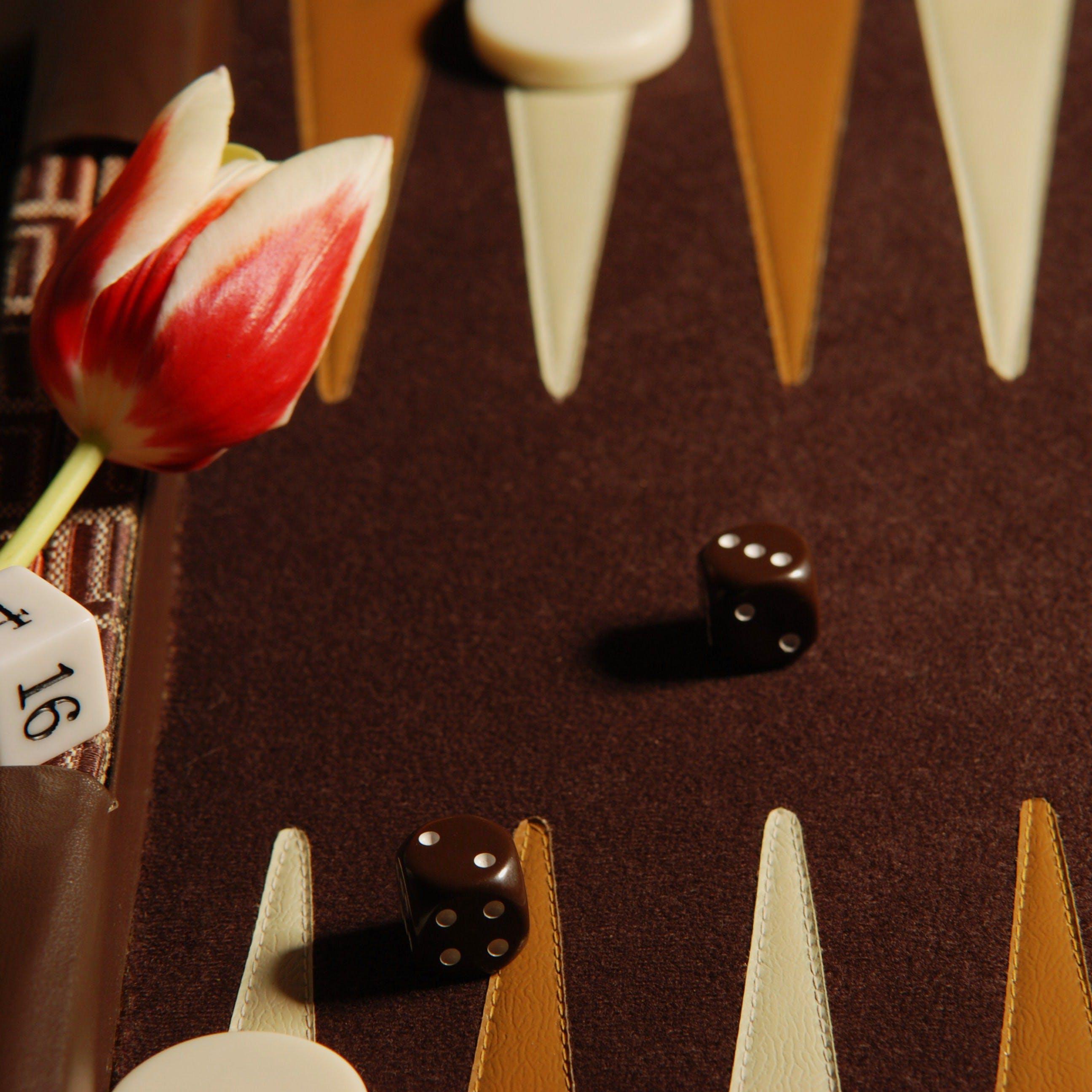 Gratis lagerfoto af backgammon, terning, tulipan