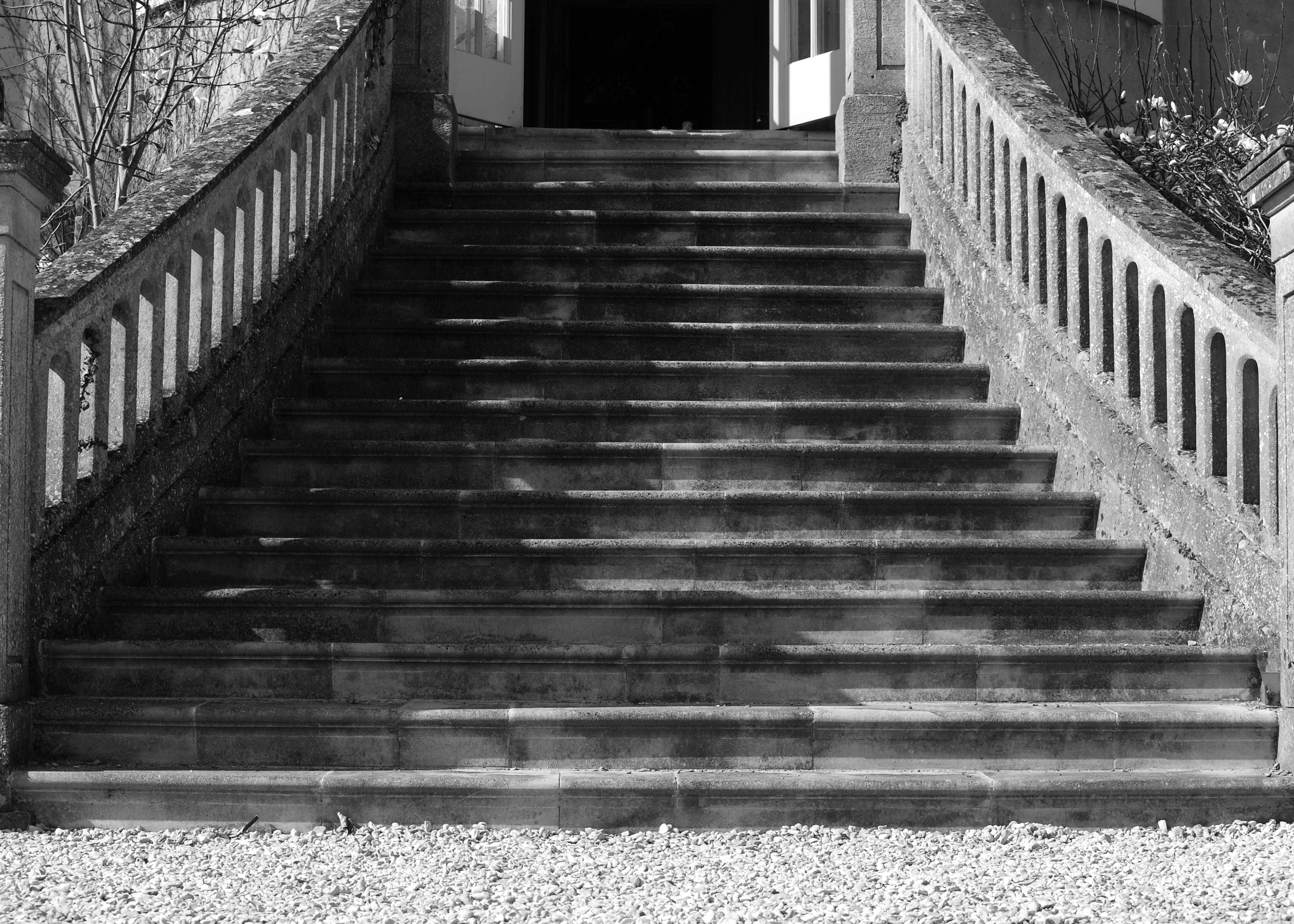 Free stock photo of black and white, stately home, steps