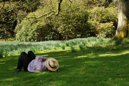 Free stock photo of chilled out, daffodils, hat, man