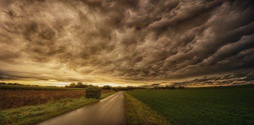 Kostnadsfri bild av dramatisk, fält, gryning, himmel