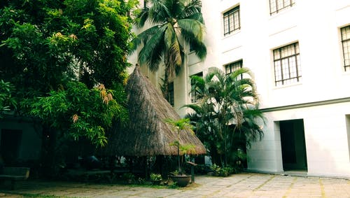 Free stock photo of landscape, museum, nipa hut, trees