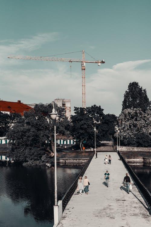 คลังภาพถ่ายฟรี ของ กลางวัน, คน, นกกระเรียน, สถาปัตยกรรม