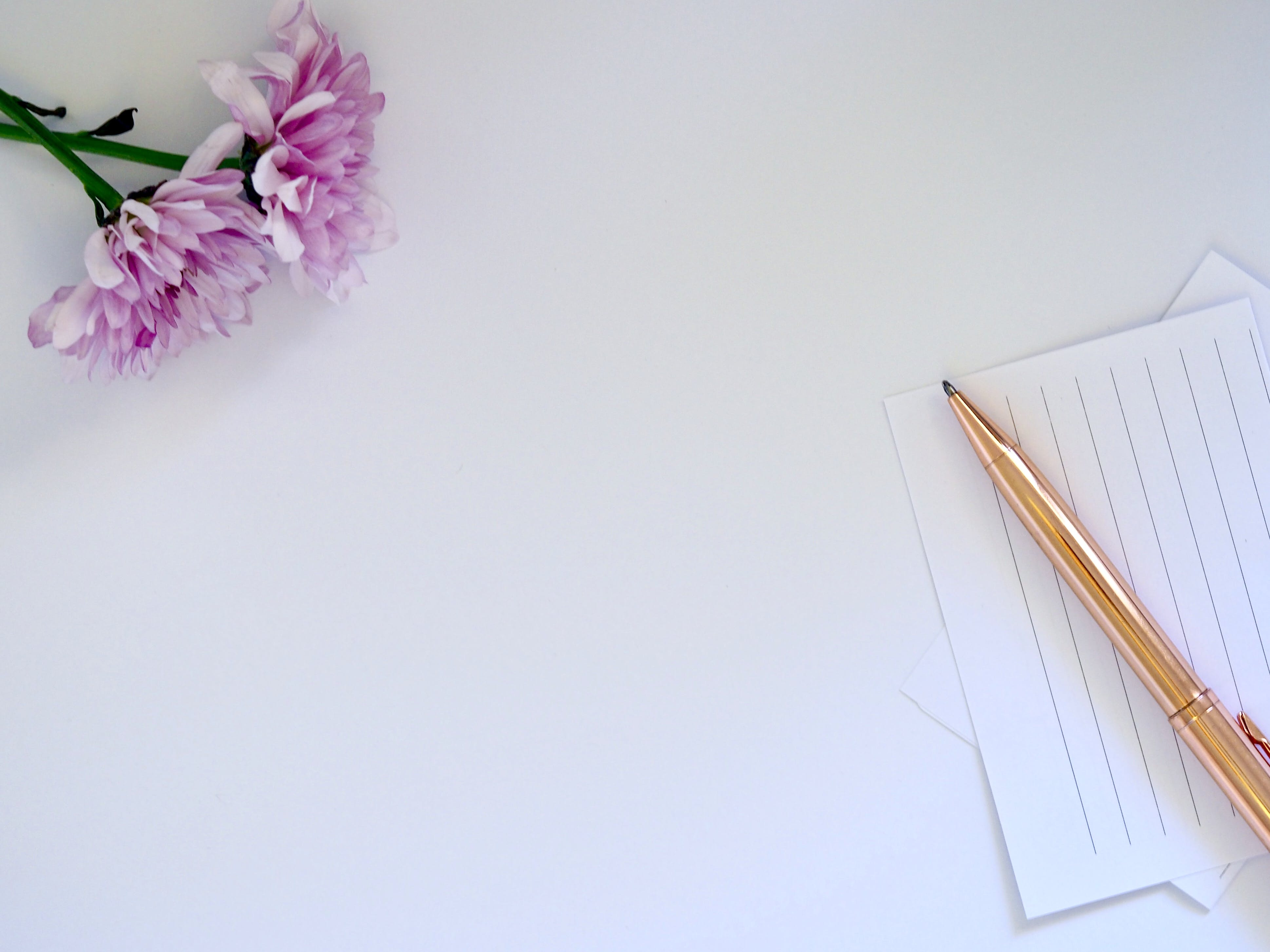 Kostenloses Stock Foto zu blumen, stift, mockup, papier