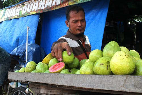 Foto stok gratis Asia, bahasa Indonesia, Indonesia, jambu biji