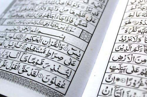 Foto stok gratis arab, Islam, muslim, Quran