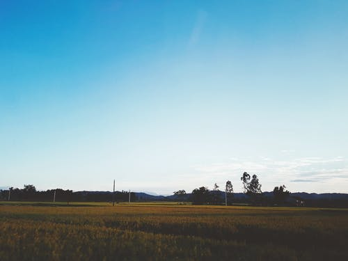 Foto d'estoc gratuïta de camp, capvespre, cel blau, muntanya