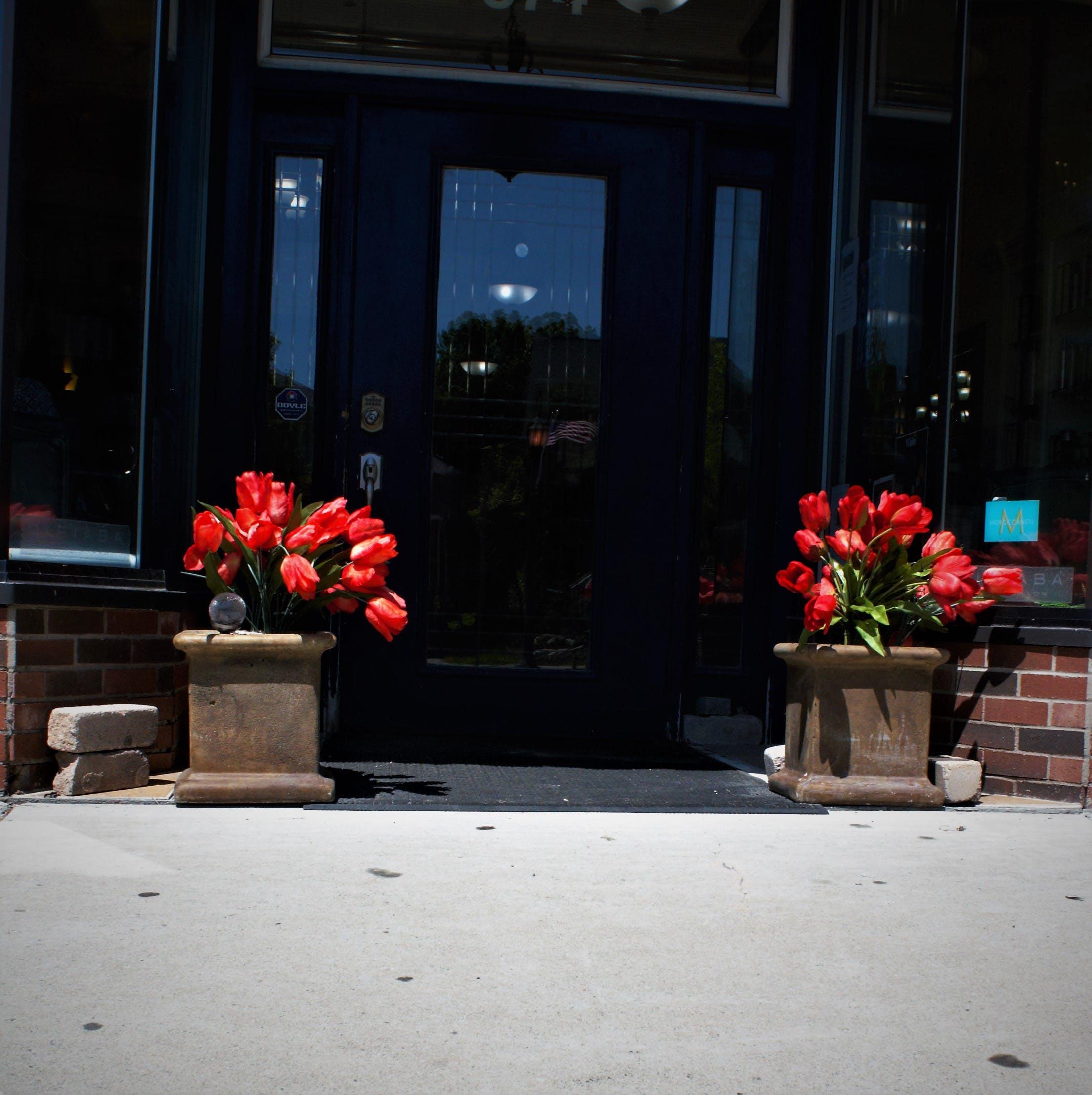 Free stock photo of beautiful flowers, manicure, nails, shopping