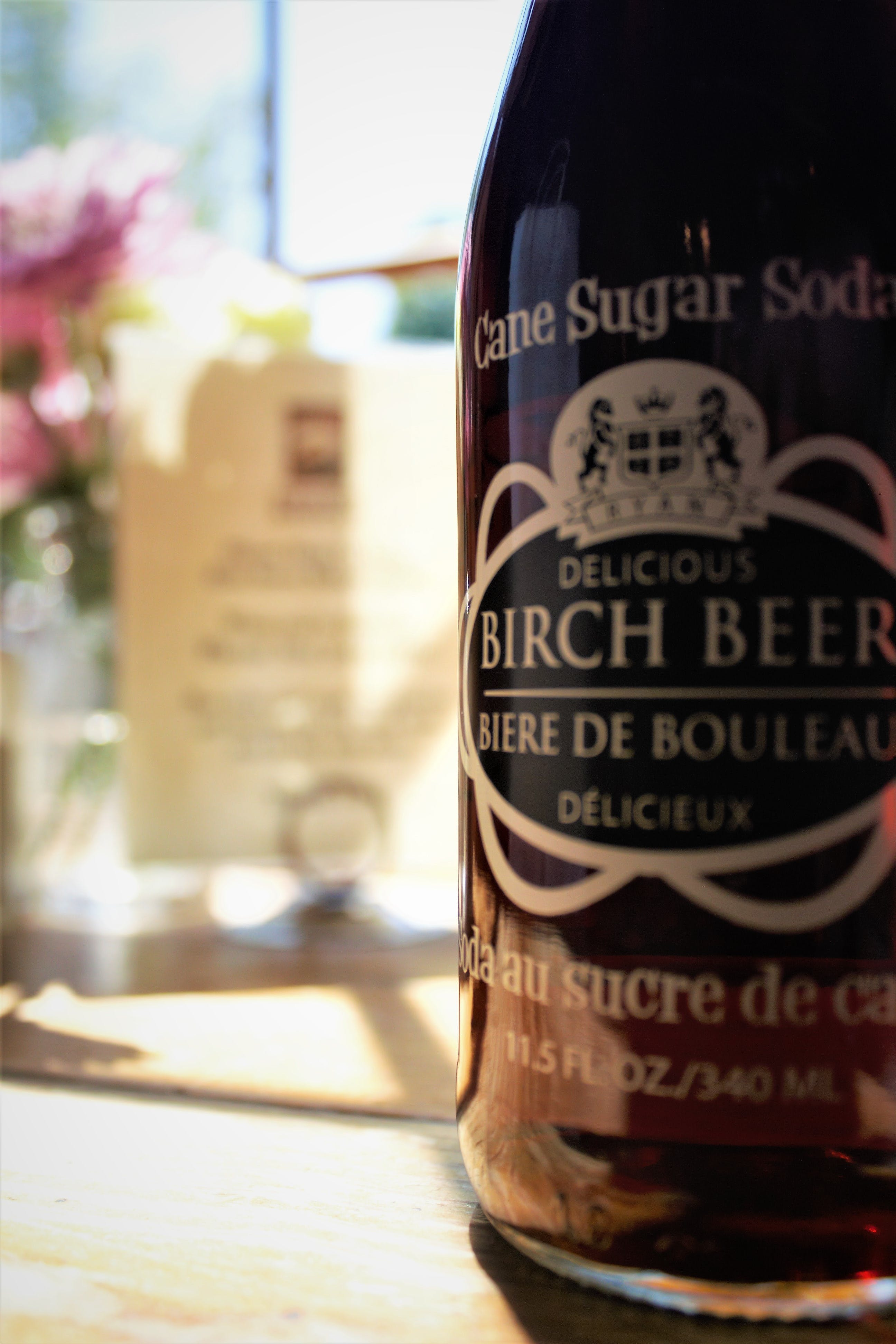 Free stock photo of birch beer, canon, food, foodies