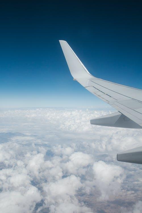 flyg, flygplan, flygvinge