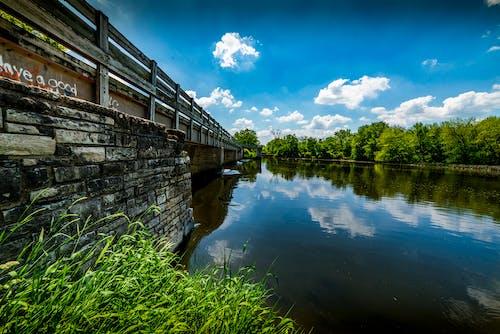 Photos gratuites de bois, canal, eau, été