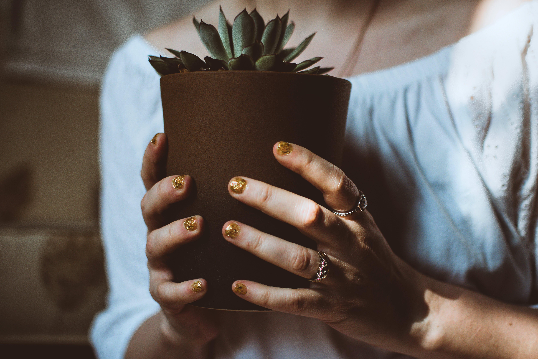 Person Holding Plant Pot