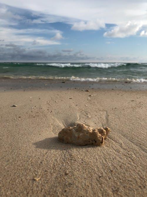 Kaya, plaj, plaj Hayatı içeren Ücretsiz stok fotoğraf