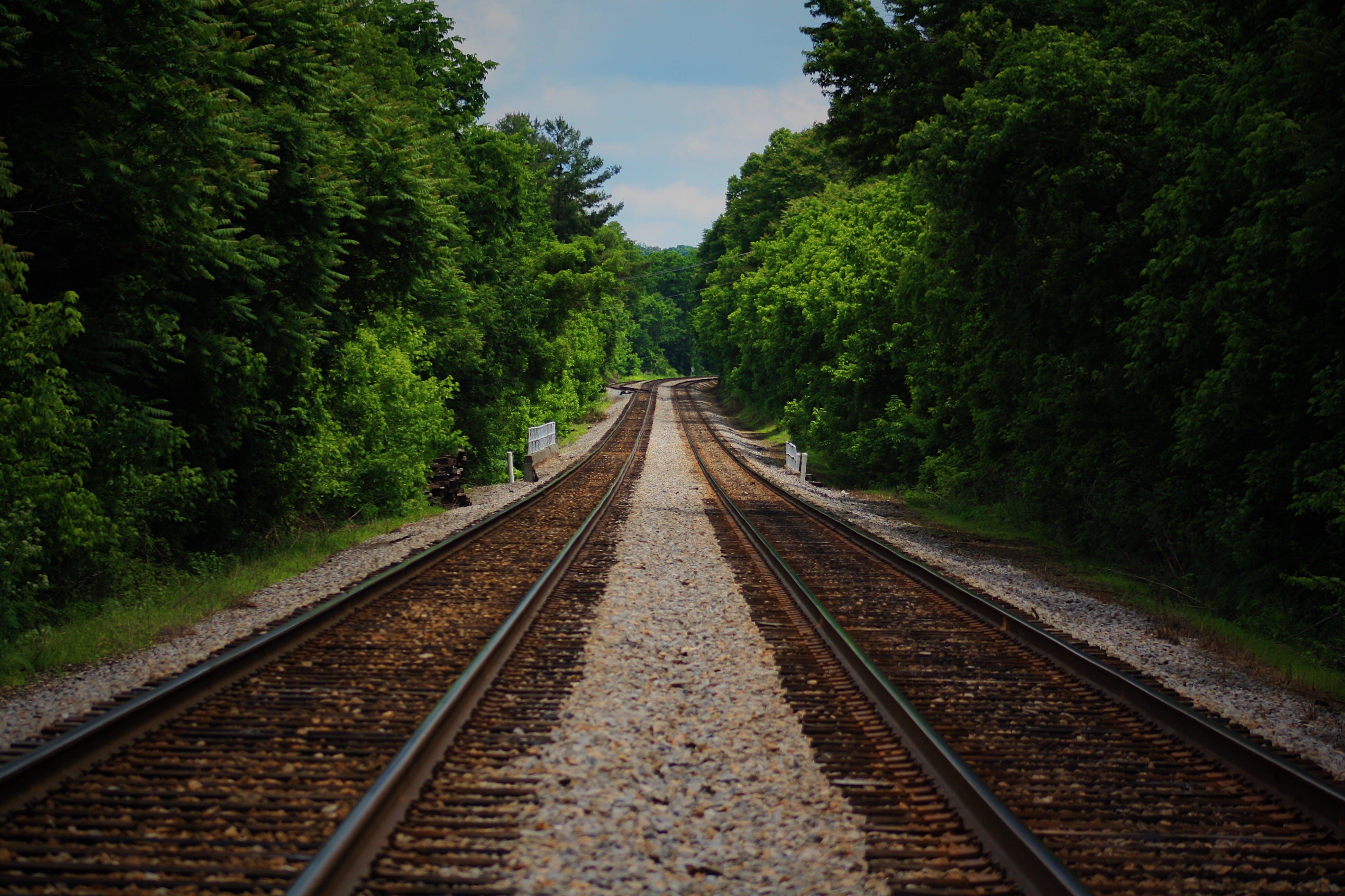 Brown Train Railway Between Green Trees at Daytime