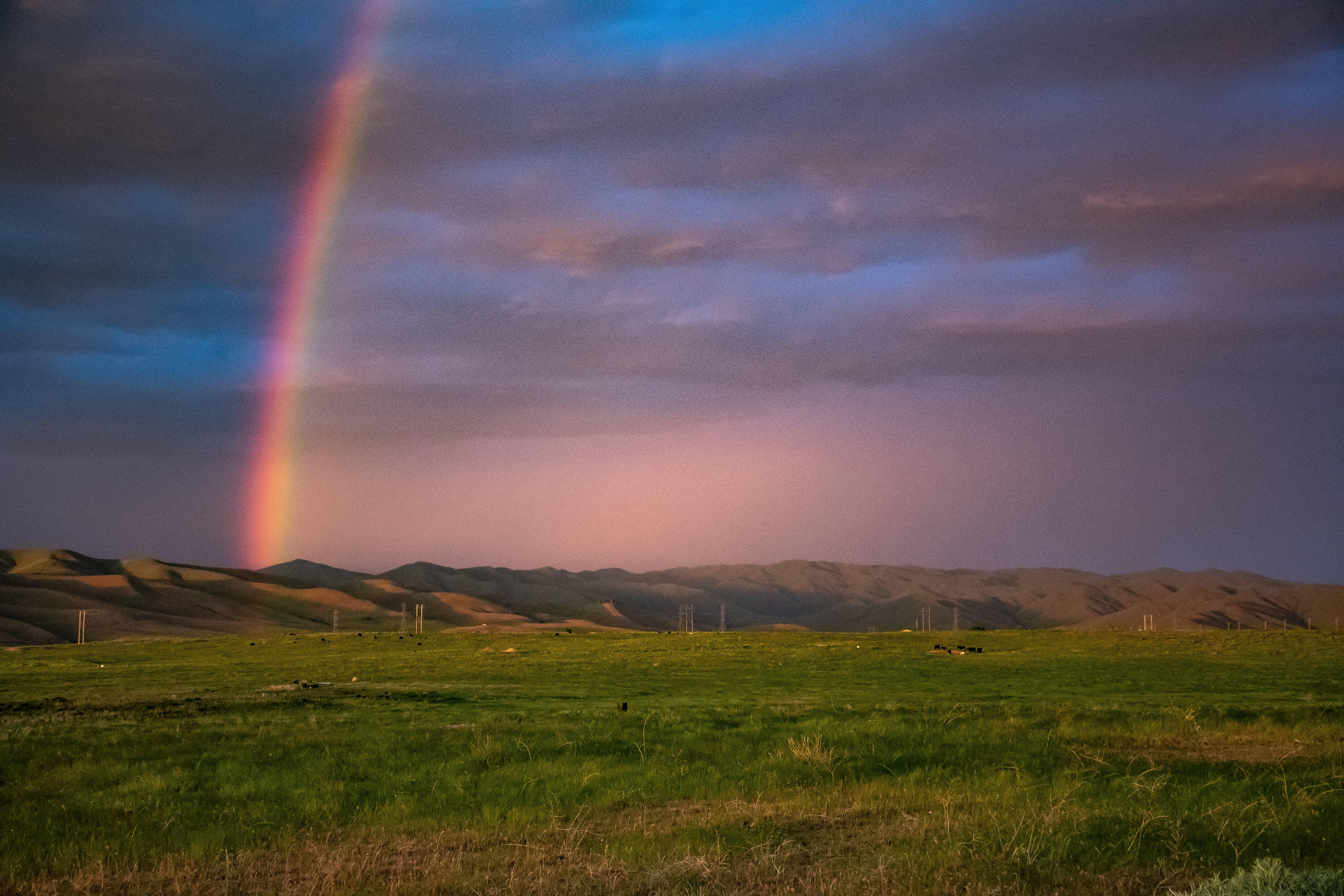 Základová fotografie zdarma na téma duha, farma, krajina, lehký