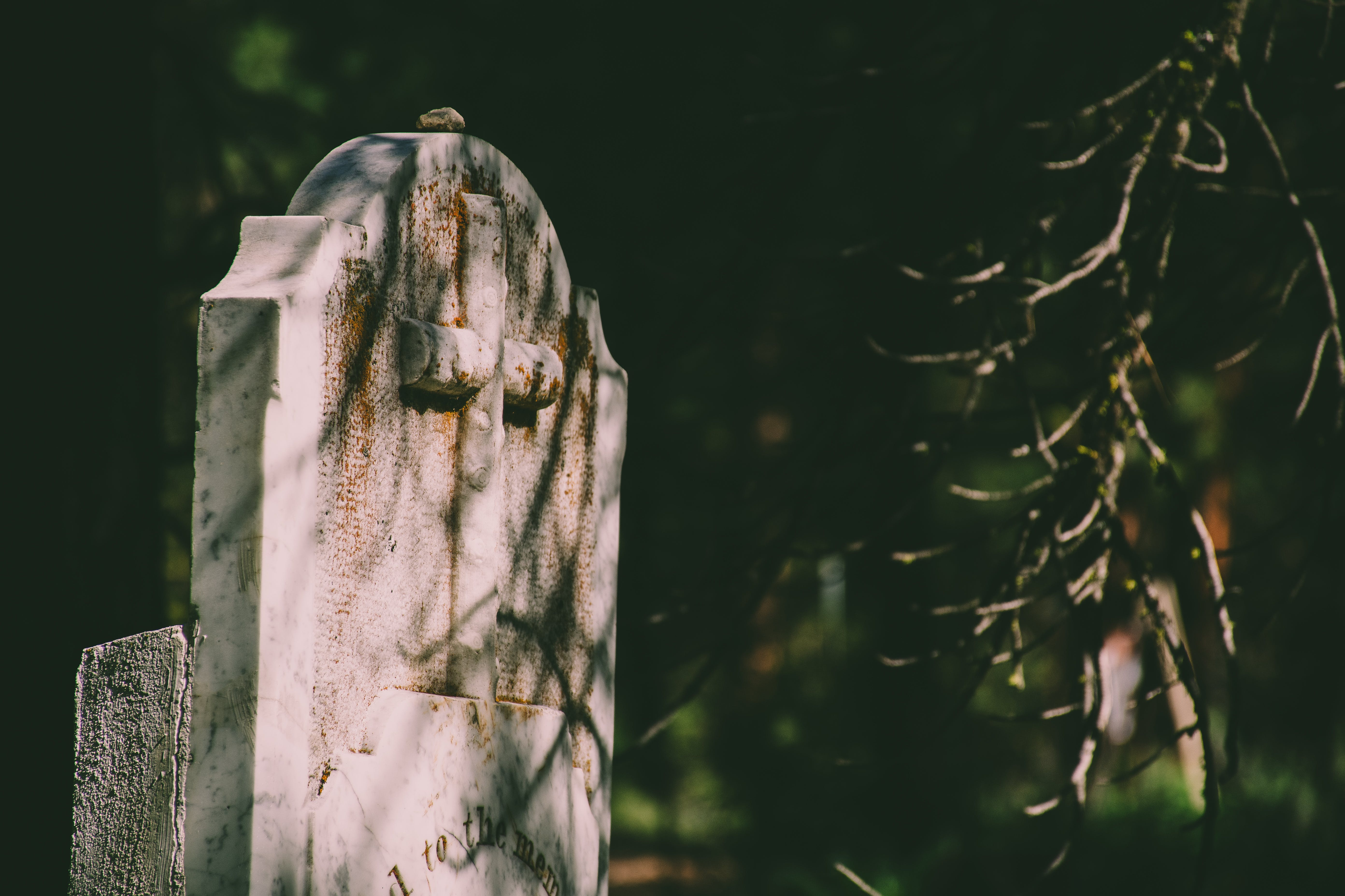 Selective Focus Photography of Tombstone