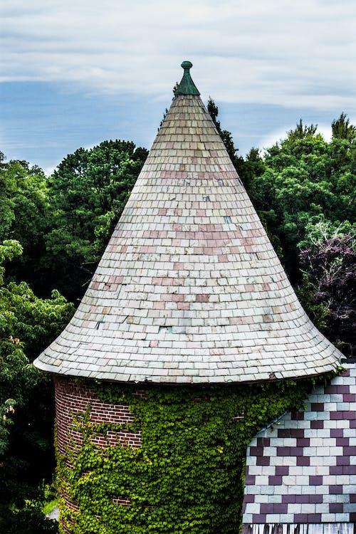 冰淇淋甜筒, 冷冰冰, 屋頂, 森林 的 免費圖庫相片