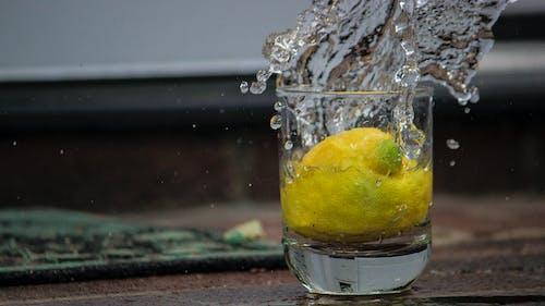 Ilmainen kuvapankkikuva tunnisteilla hedelmä, jää, juomalasi, keltainen