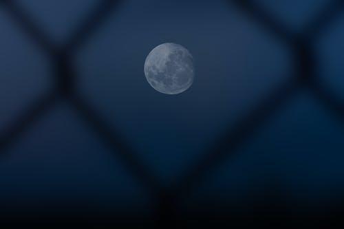 Foto profissional grátis de lua, lua cheia