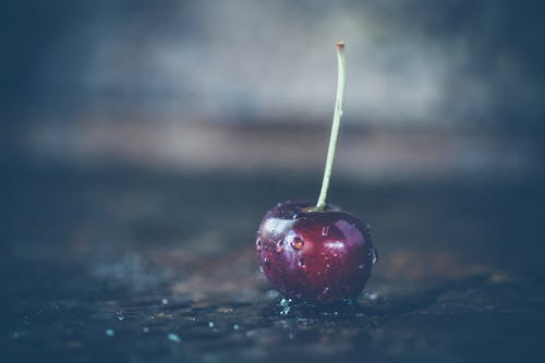 Shallow Focus Photography of Red Cherry