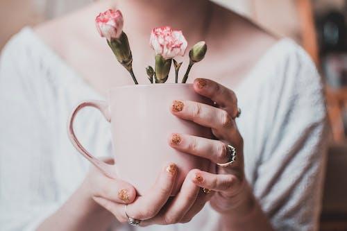 つぼみ, アダルト, セラミック, セラミックカップの無料の写真素材