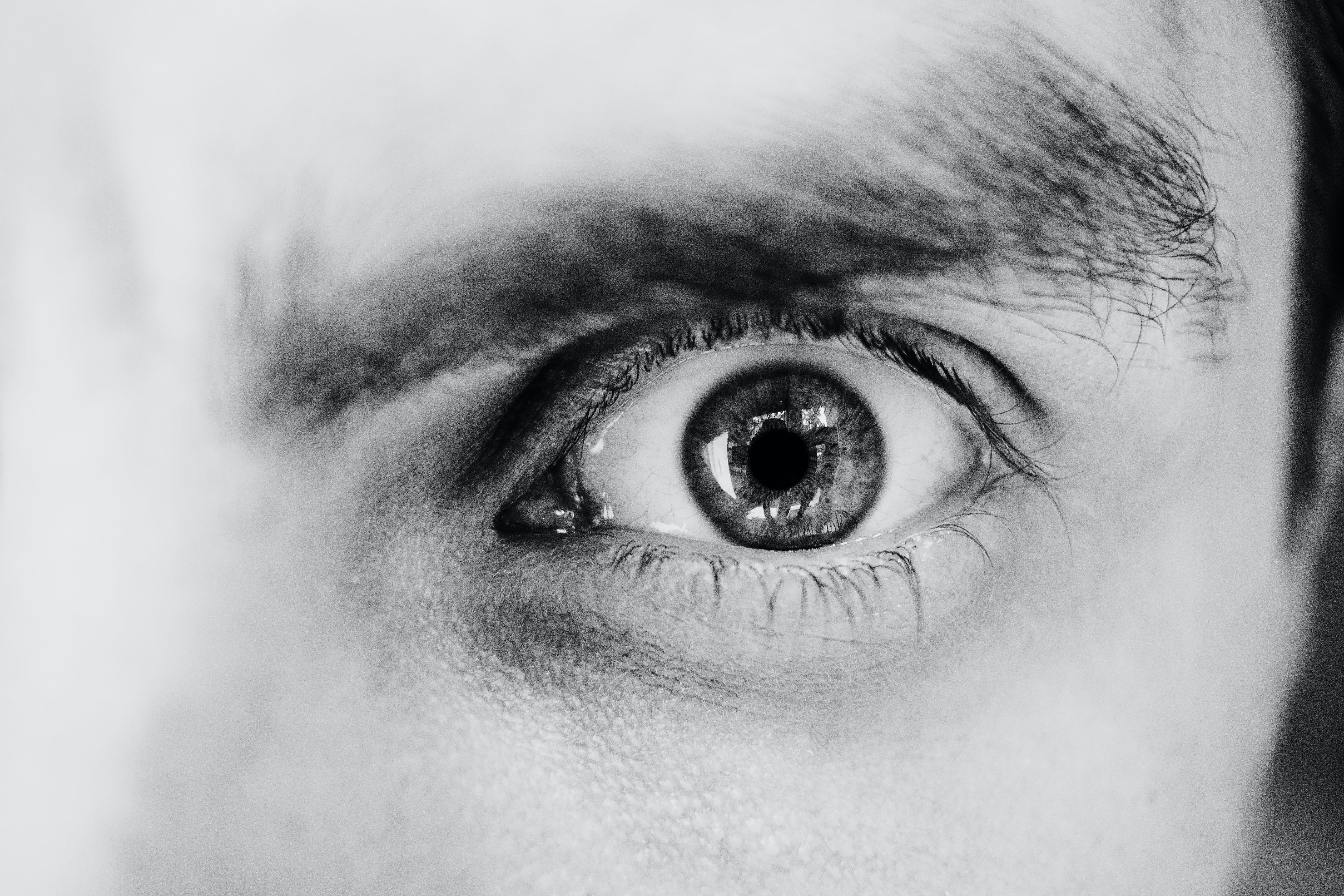 Grayscale Photo of Person's Left Eye