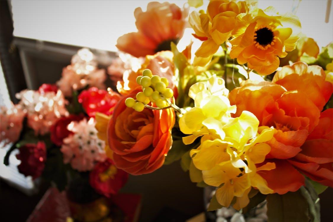 bình hoa, cắm hoa, hoa