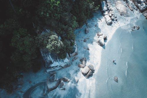 Imagine de stoc gratuită din apă, arbori, călătorie, expediție