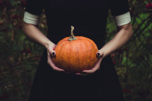 Free stock photo of food, person, hands, halloween
