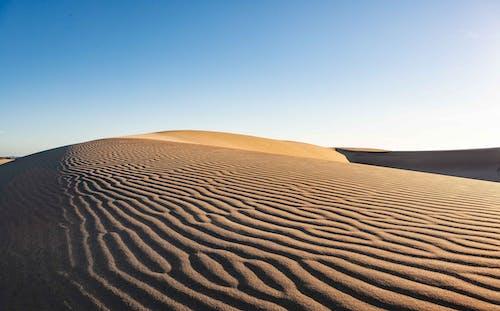 乾旱, 乾的, 冒險, 天性 的 免费素材照片