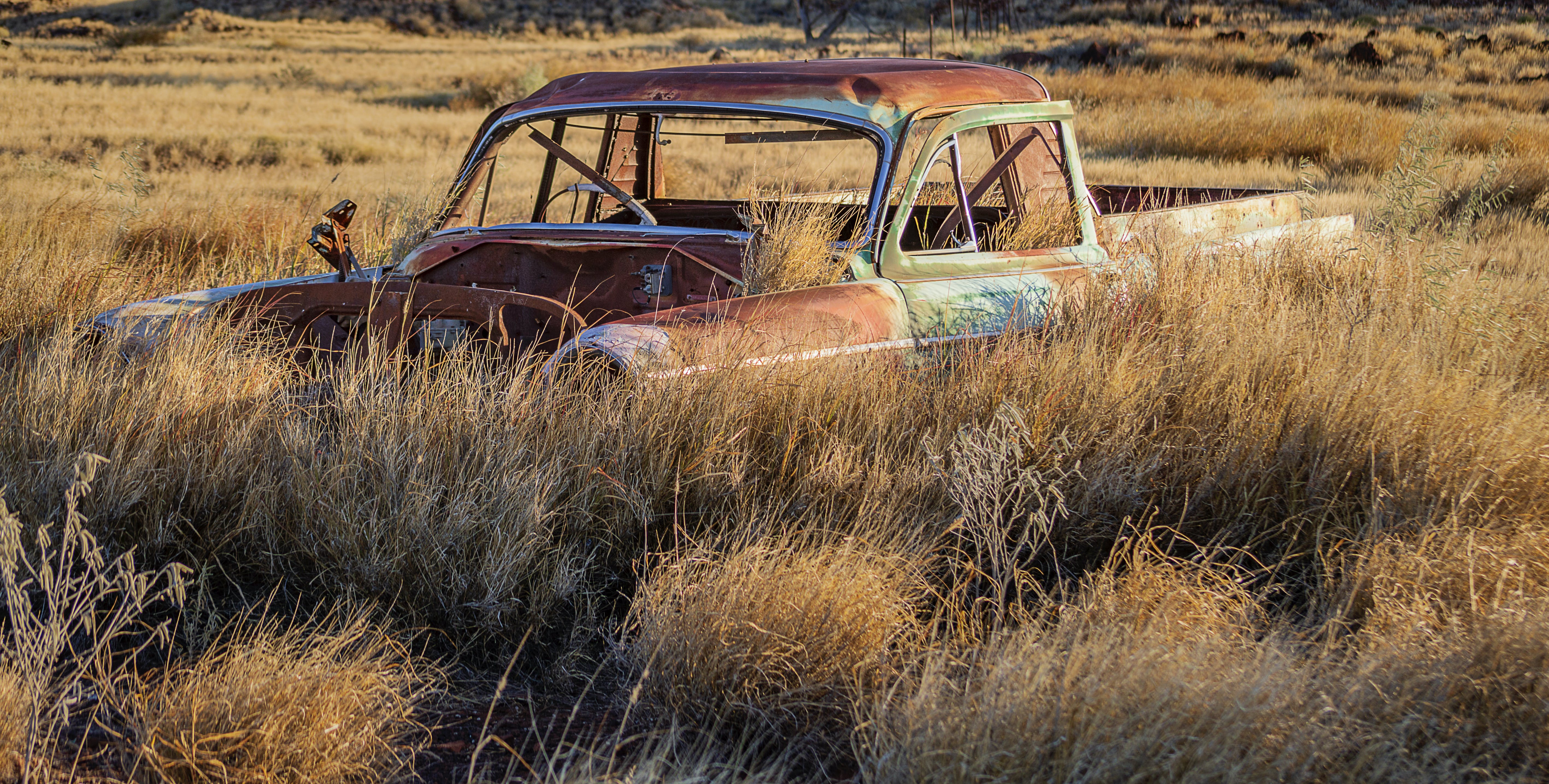 Free stock photo of abandoned cars, automobile, cars, old cars