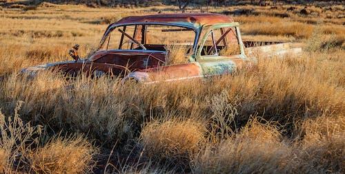 arabalar, eski arabalar, paslanmış arabalar, terkedilmiş arabalar içeren Ücretsiz stok fotoğraf