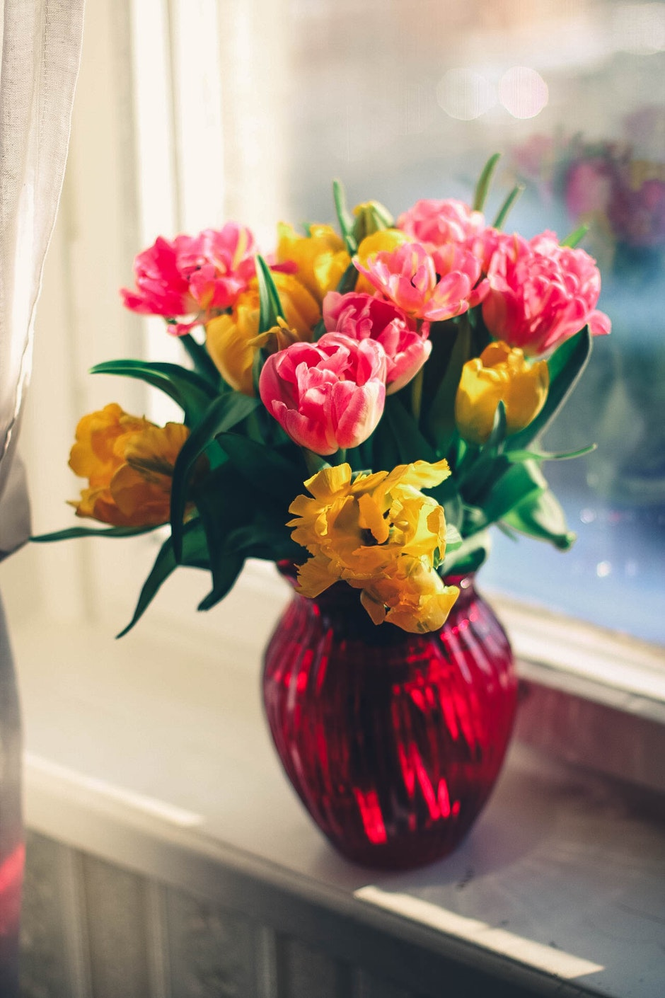 Pink and Yellow Petaled Flower on Red Glass Vase