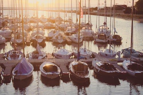 ボート, 水, 海, 海洋の無料の写真素材