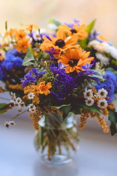 Yellow pink and orange flower bouquet free stock photo orange purple green and white flowers decor mightylinksfo