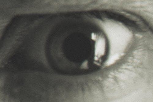 Free stock photo of art, eye, macro photography