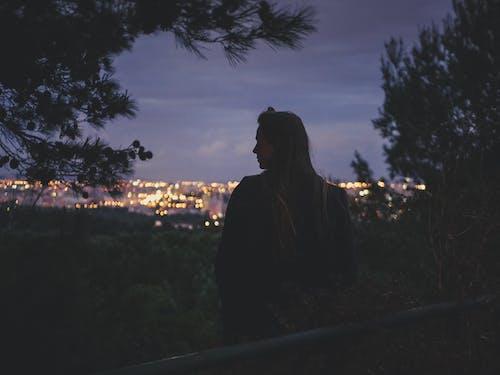 Immagine gratuita di alberi, ambiente, città, città di notte