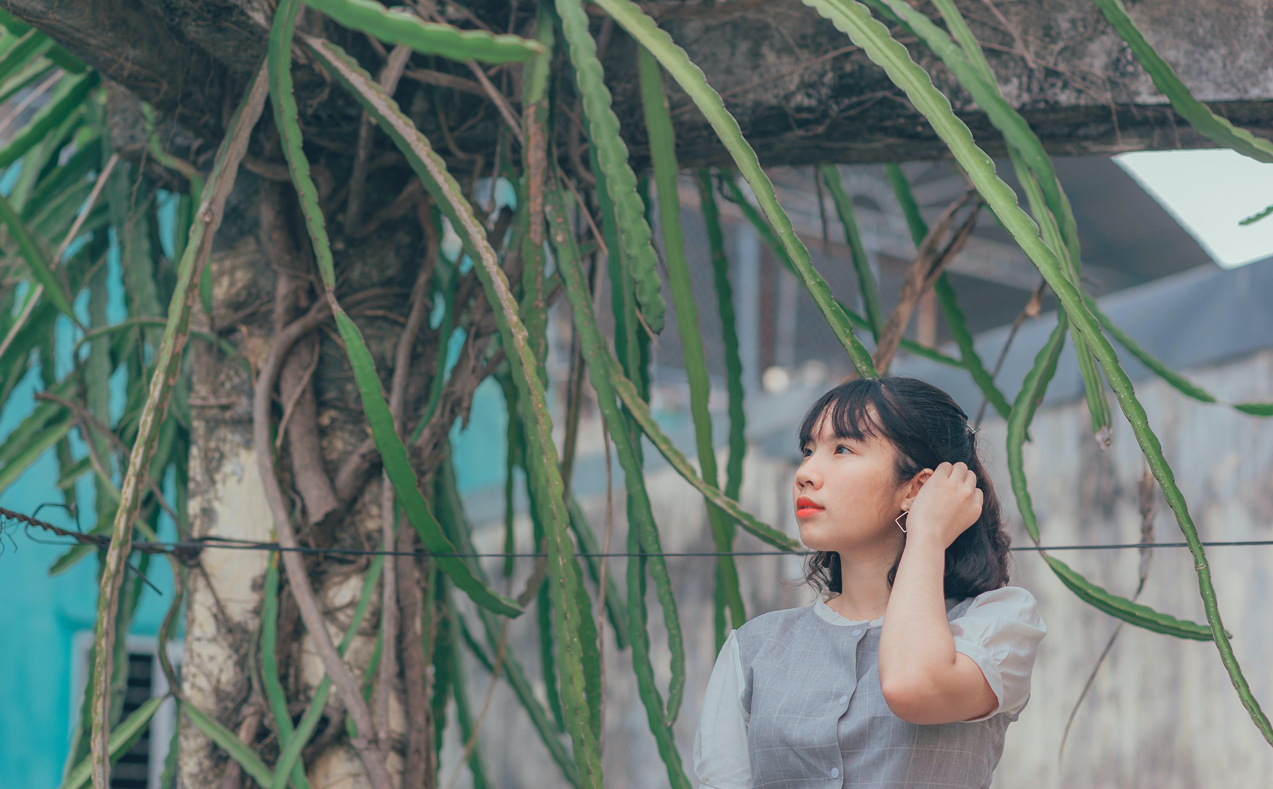 Бесплатное стоковое фото с азиатка, взгляд вверх, девочка, дерево